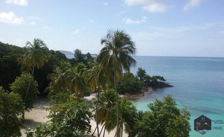 Découvrez l'ile de la Martinique - Anse Figuier-Sud-ouest