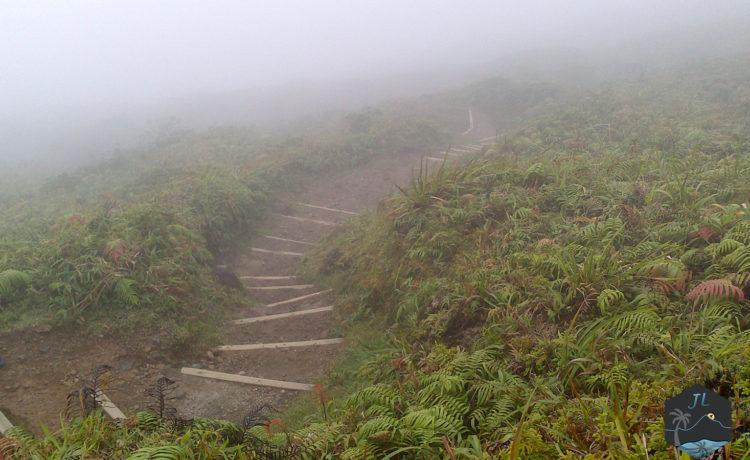 Découvrez l'ile de la Martinique - Montagne Pelée-Montée