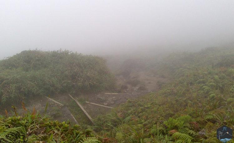 Découvrez l'ile de la Martinique Montagne Pelée-Marches