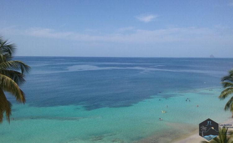 Découvrez l'ile de la Martinique - Plage Anse Figuier