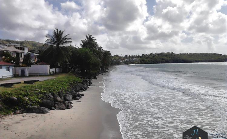 Découvrez l'ile de la Martinique Plage du Diamant