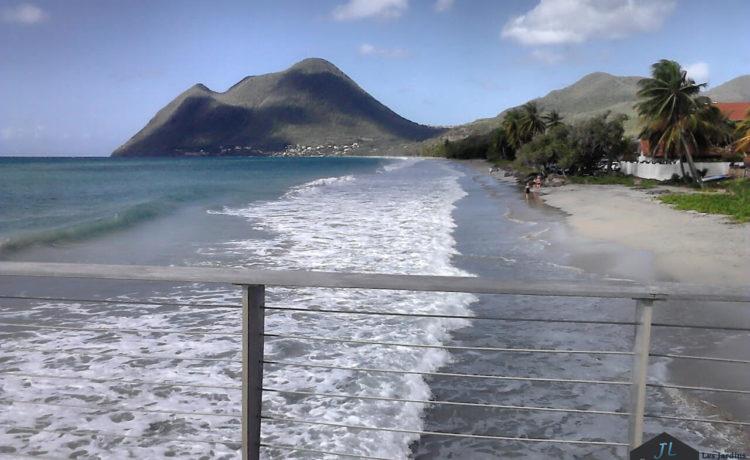 Découvrez l'ile de la Martinique