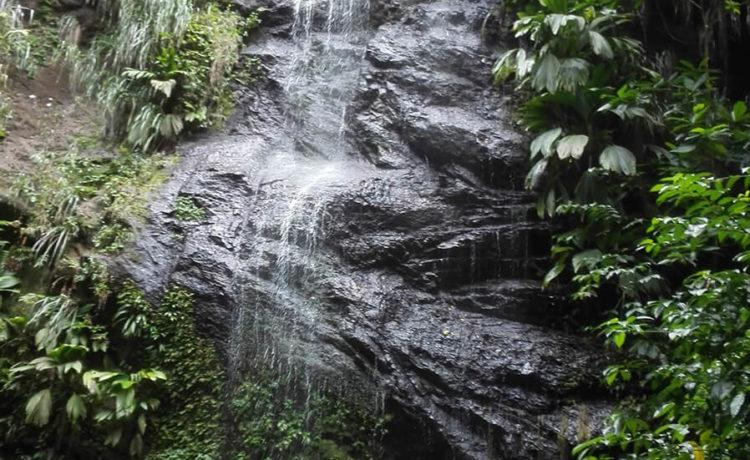 Découvrez l'ile de la Martinique Cascade d'Anse couleuvre et son chemin escarpé