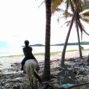 Balade à Cheval - Martinique